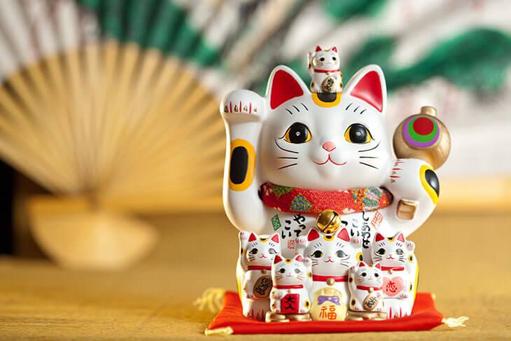 Каким бывает японский кот? Внешний вид и значение